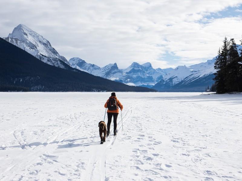Langläufer mit Hund