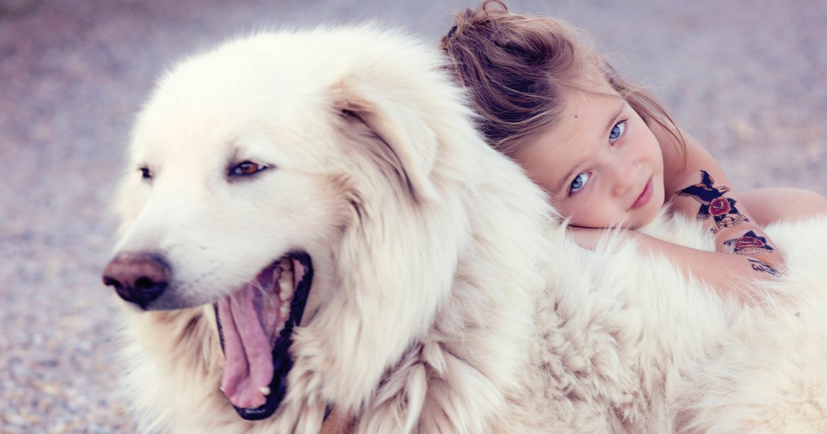 Das bedeutet es wirklich, wenn dein Hund gähnt