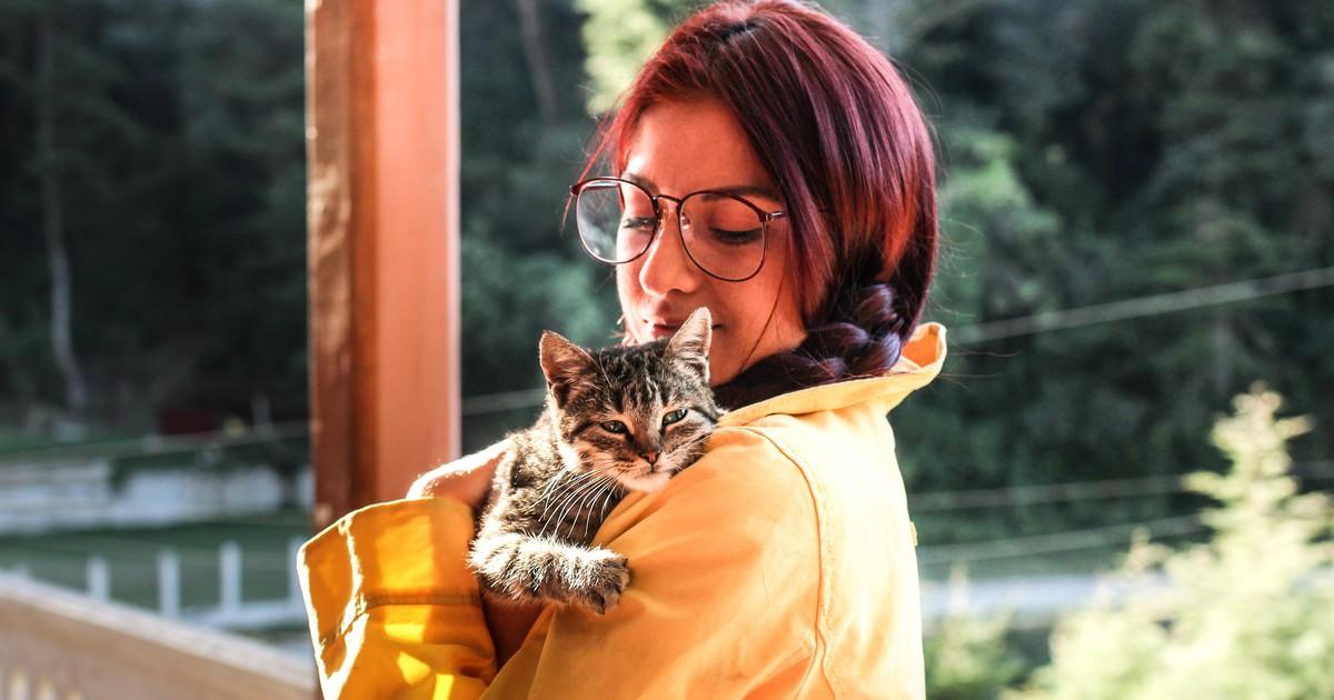 Gründe, warum Katzen gerne mit dir kuscheln - und warum eher nicht