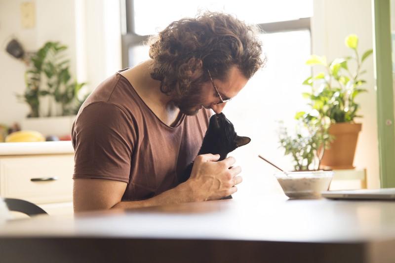 Eine Katze stubst ihren Besitzer mit der Nase an