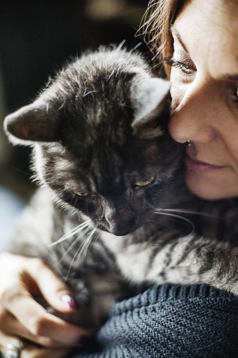 Eine Katze und eine Frau kuscheln und reiben die Köpfe aneinander