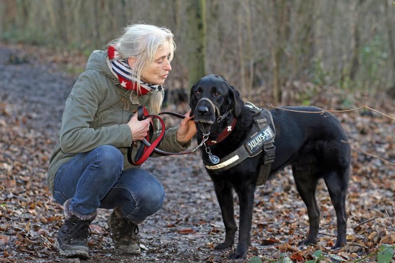 Eine Hundebesitzerin verbringt draußen in der Natur Zeit mit ihrem intelligenten schwarzen Labrador.