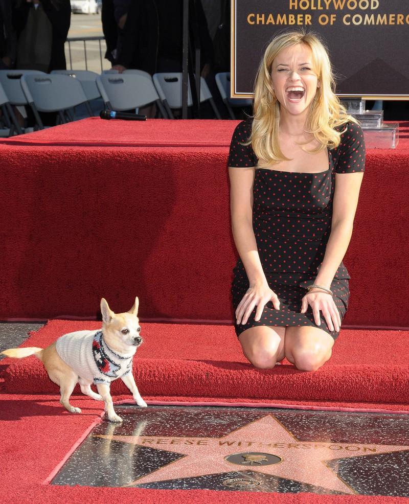 Reese Witherspoon erhält einen Stern mit ihrem berühmten Hund