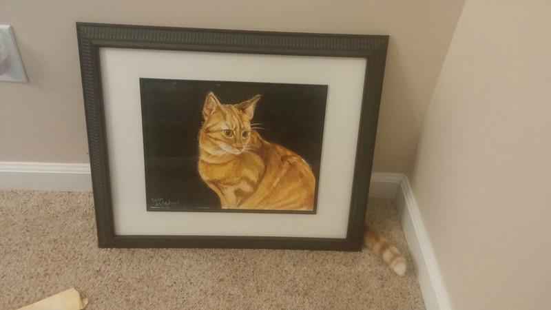 Die Katze versteckt sich hinter dem Gemälde.