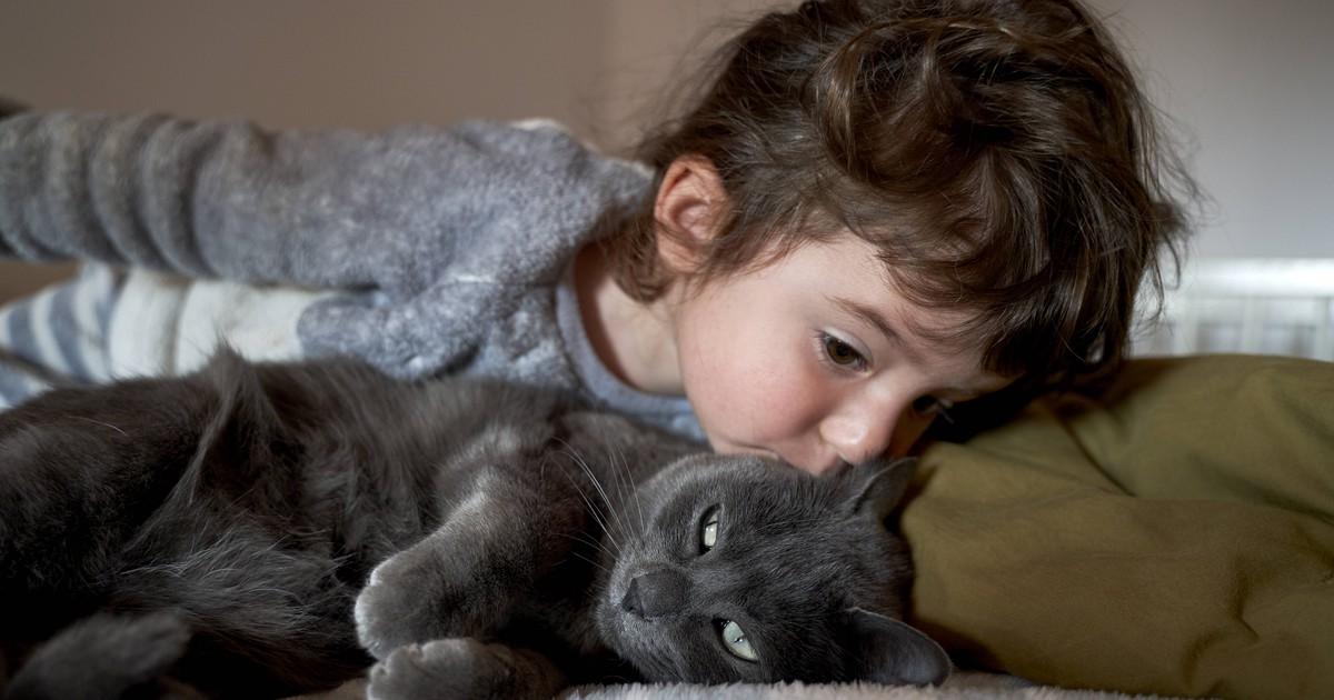 Gibst du deiner Katze einen Kuss? Das solltest du nicht tun!