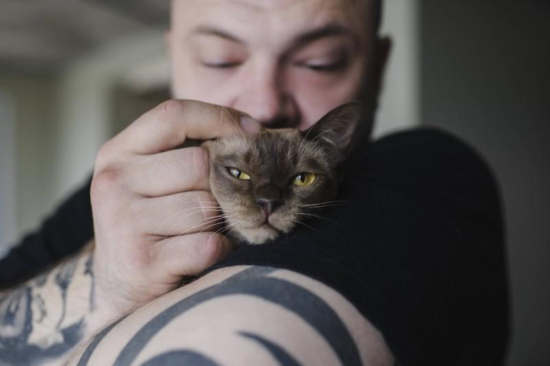 Statt deiner Katze einen Kuss zu geben, solltest du sie lieber mit einer Streicheleinheit verwöhnen