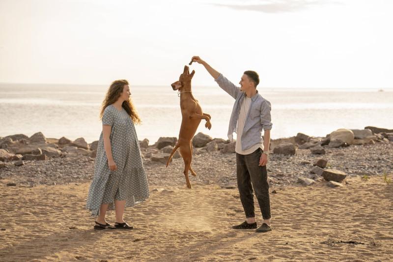 Wie viel Bewegung dein Hund braucht, hängt auch von seiner Kondition ab.