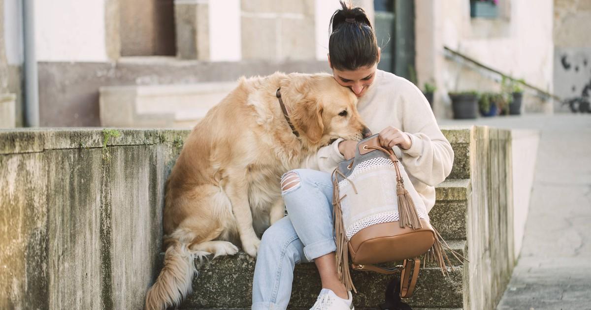 Herzergreifend: So süß tröstet der Hund sein Frauchen