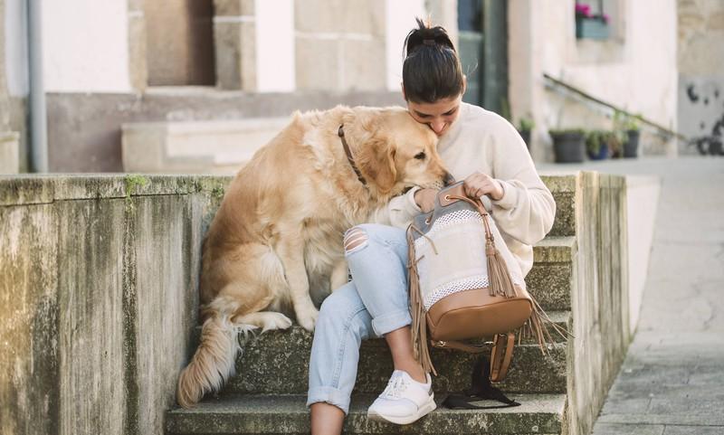 Hunde erkennen die Gefühlsregungen vom Frauchen und trösten sie auch mal, wenn es sein muss.