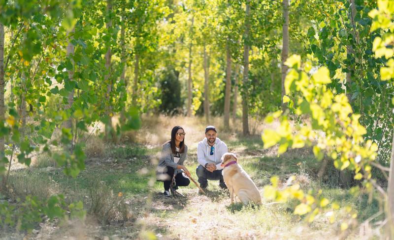 Vor dem Spaziergang mit dem Hund, lohnt es sich Spot-on-Präparate zu verwenden, um ihn vor Zeckenbissen zu schützen.