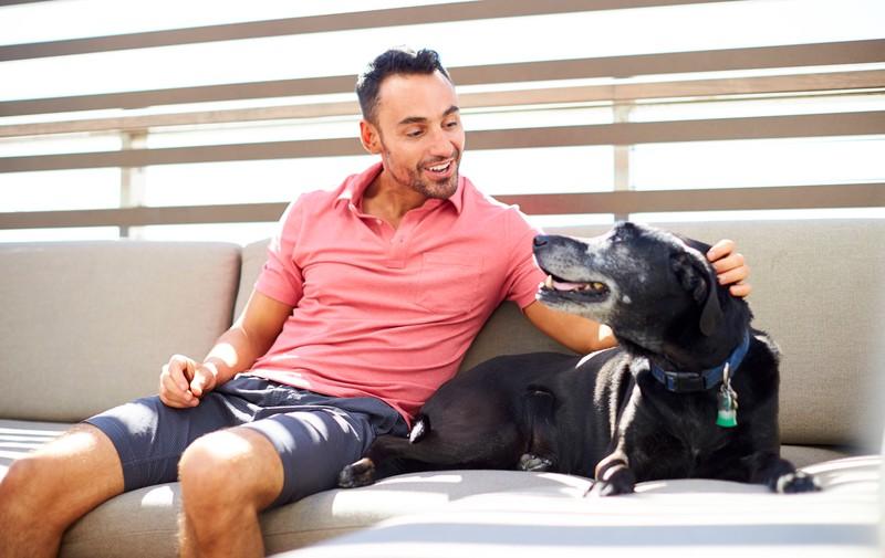 Der Bund zwischen Hund und Mensch ist einzigartig, besonders wenn der Hund bemerkt, dass es dem Menschen nicht gut geht.
