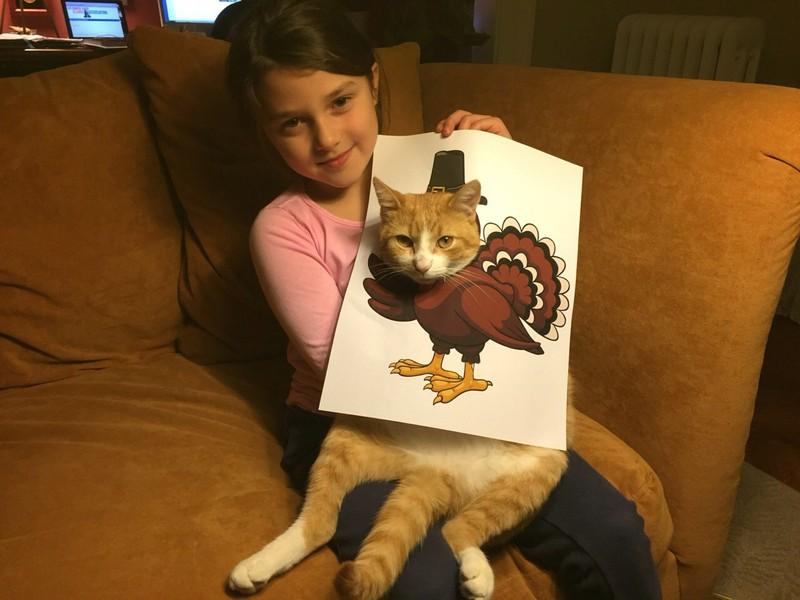 Das glückliche Kind kann sich bei ihrer Katze total kreativ austoben.