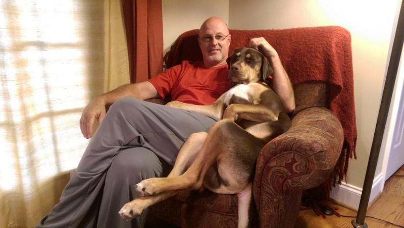 Hunde sind dafür bekannt, ihren Herrchen Dankbarkeit zu zeigen.