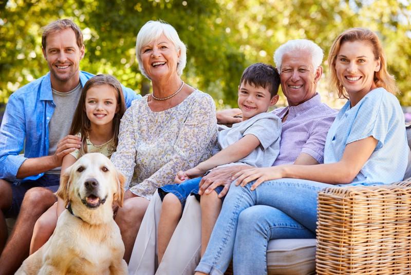Der goldige Hund ist besonders für Familien gut geeignet.