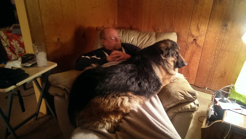 Ein Hund schaut mit seinem Herrchen auf seinem Schoß Fernsehen.