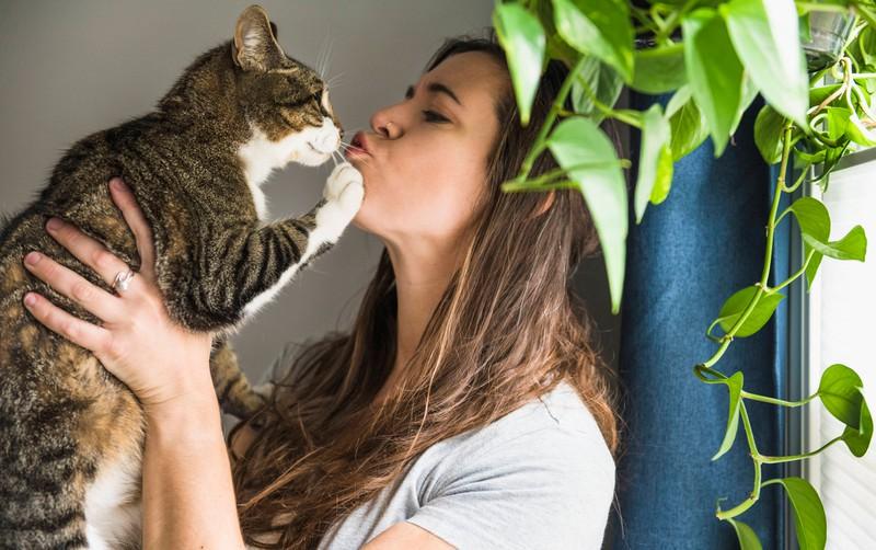 Eine Frau küsst ihre Katze, die von Zecken befreit ist.