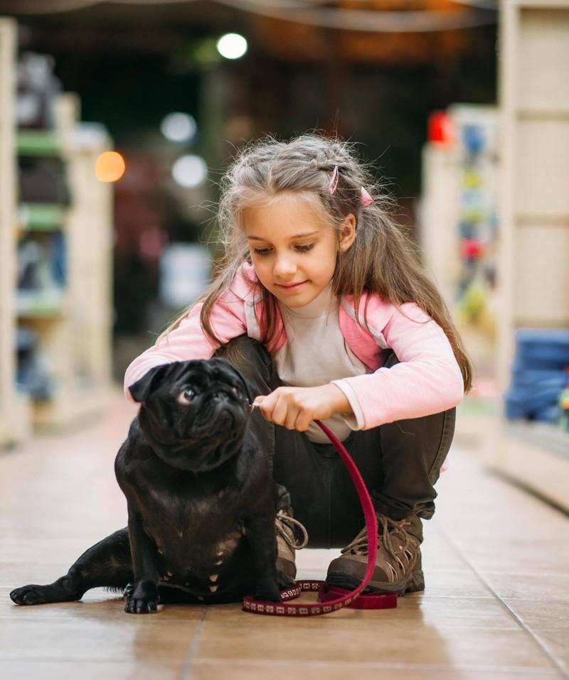 Damit der Hund auch weiterhin auf Rufe reagiert, sollte man ihn nicht sofort anleinen, wenn er kommt.
