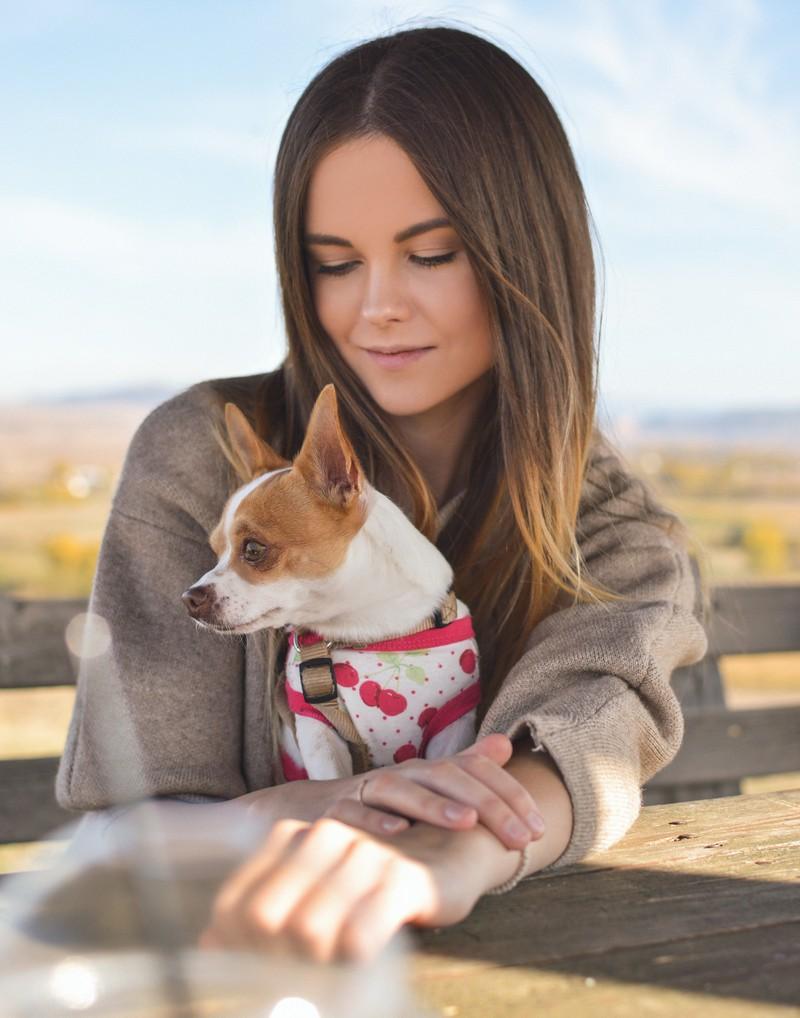 Kleiner Tipp: Der Ton macht die Musik, auch bei deinem Hund!