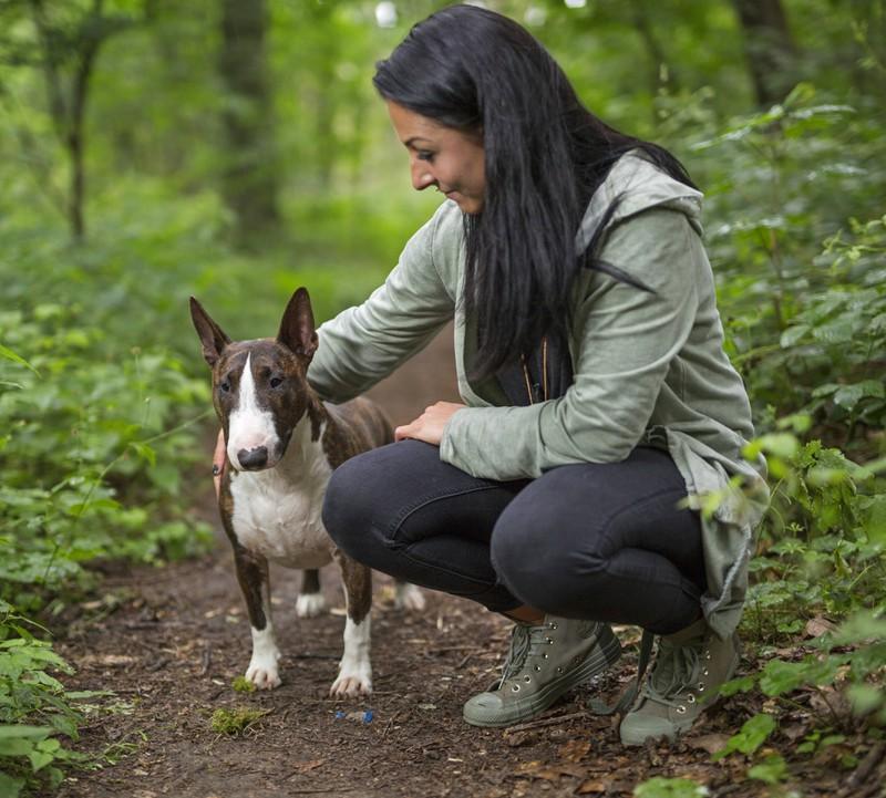 Am Fell des Hundes kann man erkennen, ob es dem Vierbeiner gut geht.