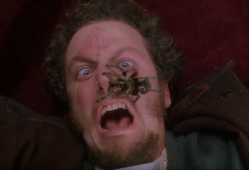 """Daniel Stern dachte, dass für die berühmte Spinnenszene aus """"Kevin allein zu Haus"""" eine Attrappe eingesetzt werden würde."""