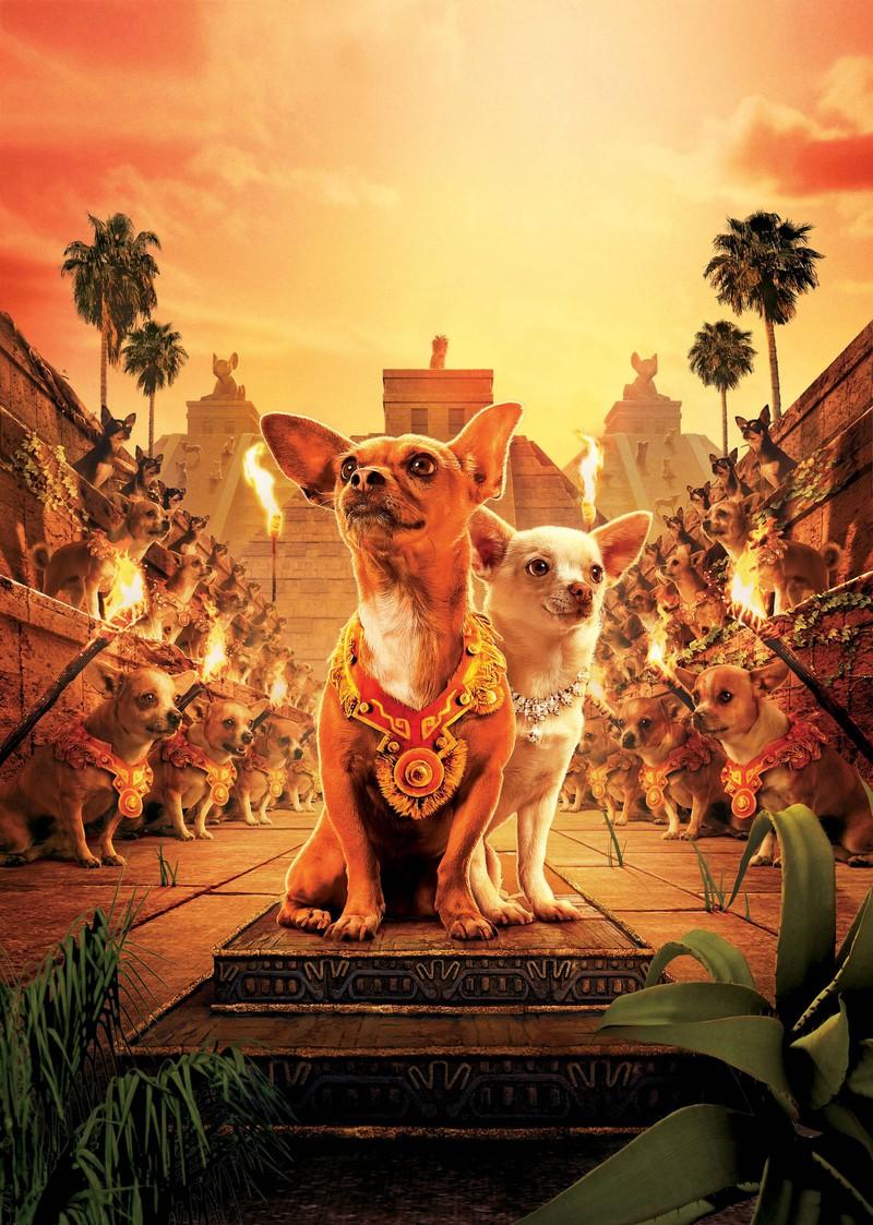 Tiere in Filmen: Little Rusco war ein absoluter Anfänger im Showbusiness.
