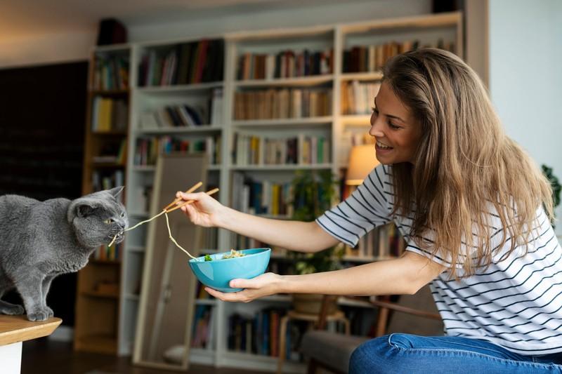 Katze futtert Nudeln: Katzen lieben Essen