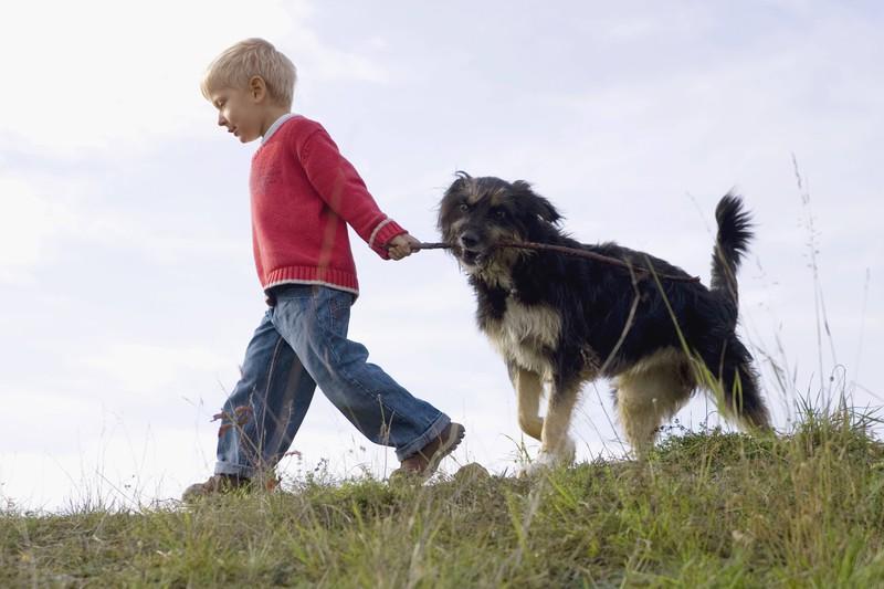 Der Hund begleitet den kleinen Jungen.