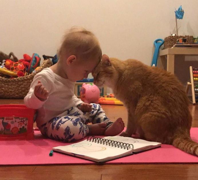 Ein Baby und eine alte Katze